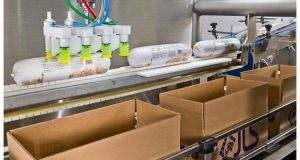 Case Packing Systems